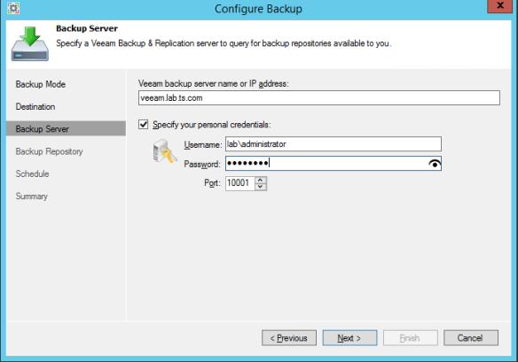 Backup Server Address